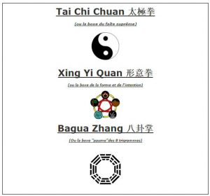 taichixingyibagua